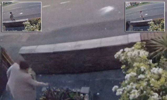 Thief with a trowel caught stealing plants and basket from