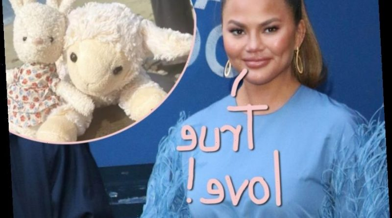 Chrissy Teigen Officiates Emotional Wedding Ceremony For Two Of Daughter Luna's Stuffed Animals!