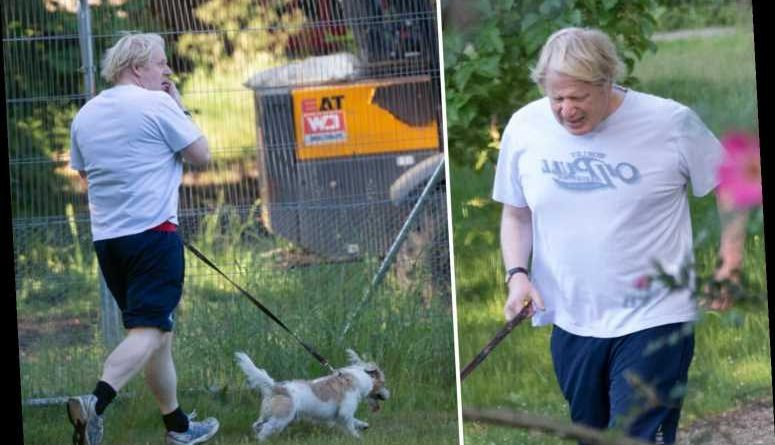 Boris Johnson looks out of breath while on early-morning run with dog Dilyn – The Sun