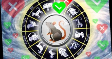 Chinese Zodiac Animals: Who is the best love match for the Rat sign?