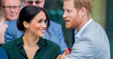 Meghan Markle and Prince Harry are 'so cute' and 'genuine' says pal Melissa McCarthy